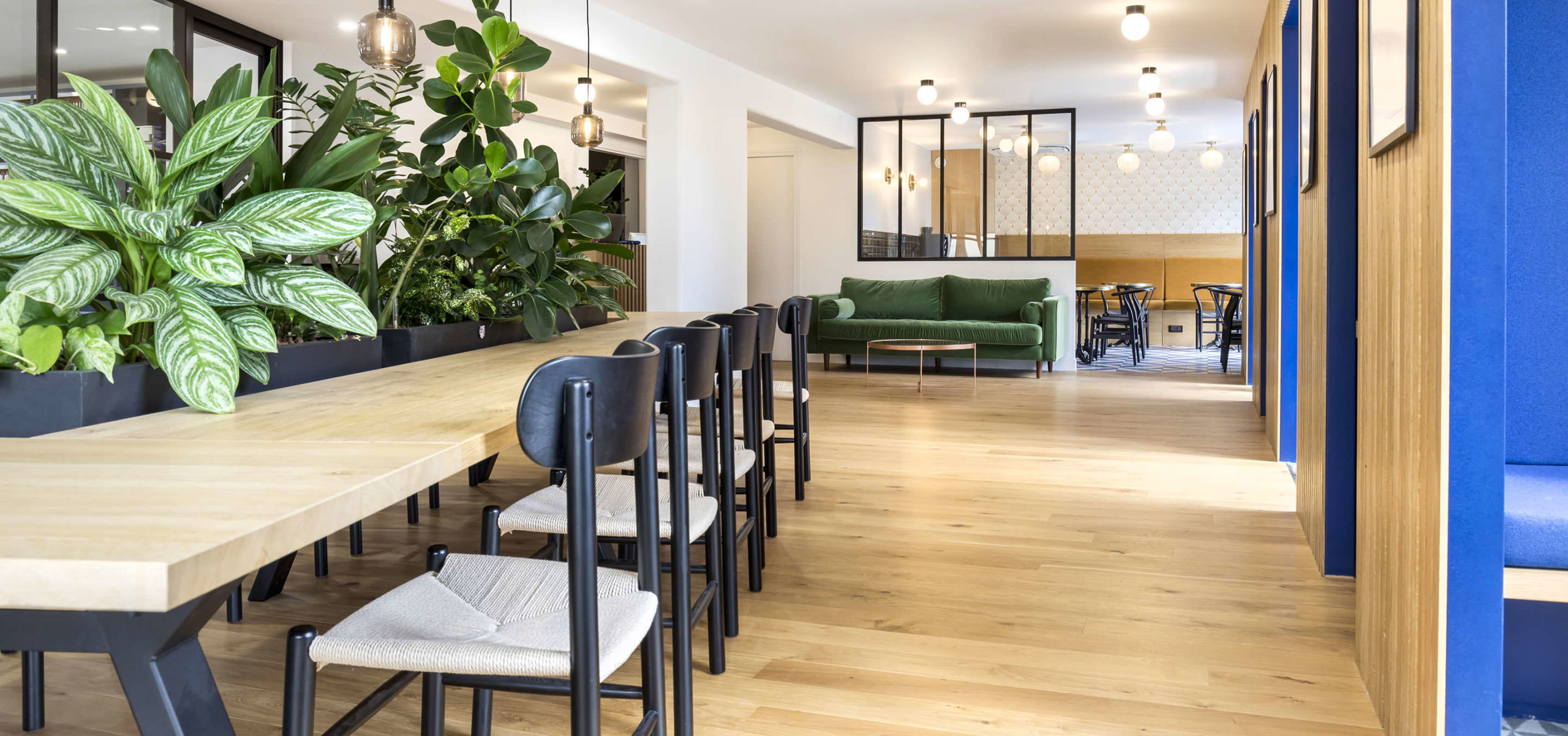 Label Experience: Vue globale espace coworking végetal dans les bureaux de « Alter Solutions » à Versailles.
