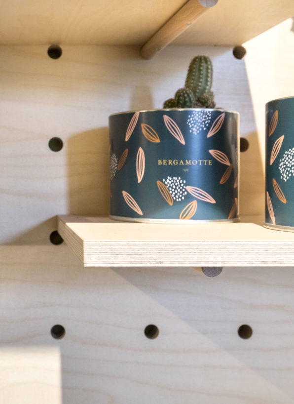 Label Experience: Focus sur un petit cactus en pot de la « Maison Bergamotte » à Paris.
