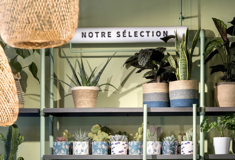 Label Experience: Focus sélection de produits verts dans la « Maison Bergamotte » à Paris.