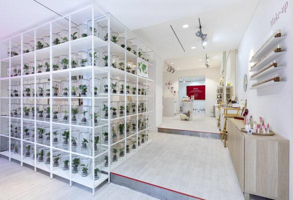 Label Experience : bibliothèque botanique Clarins dans le pop-up Clarins Lab à Paris