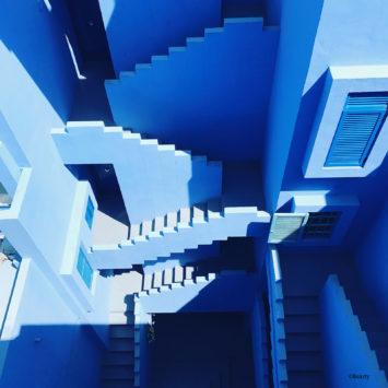 Label Experience : architecture bleu
