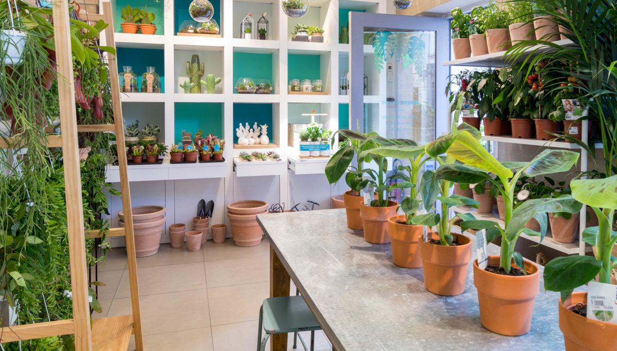 Label Experience: Vue intérieur avec étagères et plantes au pop-up store de « Truffaut » à Paris.